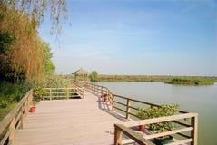 Våtmarkpark Royaltyfri Fotografi