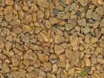 Vått grus (sömlös textur) Arkivfoto