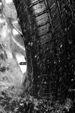 vått gummihjul Royaltyfri Bild