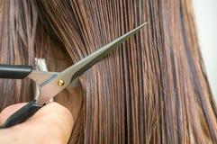 Vått hår för raksträcka med hårkammen och sax - begrepp för håromsorg Arkivfoton