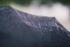 Vått paraply med regndroppar, detaljer Arkivfoton