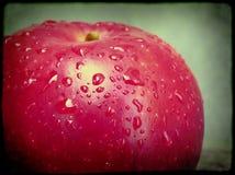 Vått rött äpple Arkivfoto