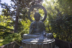 Végétation et arbres dans un jardin japonais Image libre de droits