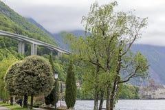 Végétation le long de rivage à Montreux Photos libres de droits