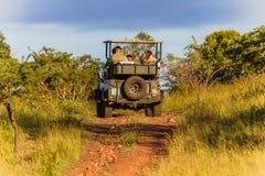 Véhicule Bush de tourisme de faune photo stock