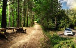 Véhicule stationné dans une forêt effrayante dans les montagnes Photos stock