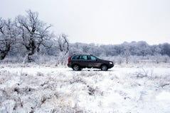 Véhicule tous terrains dans la neige image libre de droits