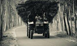 Véhicules traditionnels de tracteur avec des passagers courant dans une voie urbaine du Bangladesh Photo libre de droits