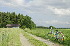 Vélo à la ferme verte de blé en Europe. Image libre de droits