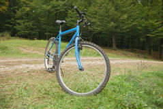 Vélo bleu Photographie stock