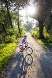 Vélo dans la forêt Photographie stock libre de droits