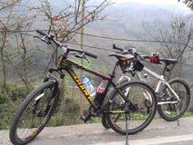 Vélo de deux bâtis à la route en montagne photos libres de droits