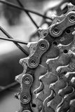 Vélo de montagne arrière vertical Photos libres de droits