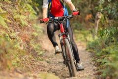 Vélo de montagne d'équitation de femme sur la traînée extérieure dans la forêt Photographie stock libre de droits