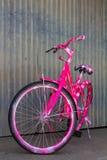 Vélo de montagne de rose de mur de zinc Image stock