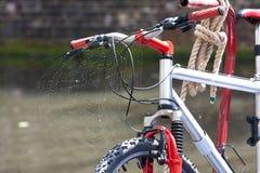Vélo et la toile d'araignée photos libres de droits