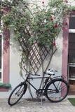 Vélo et treillis Photographie stock