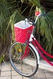 Vélo femelle rouge Images stock
