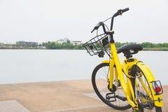 Vélo jaune avec le fond de marais Bicyclette jaune en le public Photographie stock