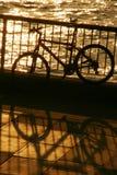 Vélo par le fleuve Photographie stock libre de droits