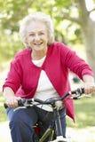 Vélo supérieur d'équitation de femme image stock