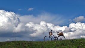 Vélo sur la pelouse Images libres de droits
