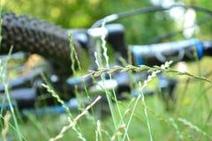 Vélo Unfocused dans l'herbe image stock