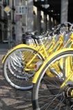Rangée des bicyclettes jaunes Photos libres de droits