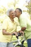 Vélos aînés d'équitation de couples en stationnement Images stock