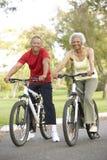 Vélos aînés d'équitation de couples en stationnement Image stock