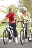Vélos aînés d'équitation de couples en stationnement Photos stock