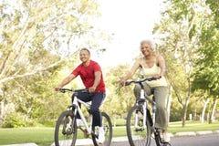 Vélos aînés d'équitation de couples en stationnement Image libre de droits