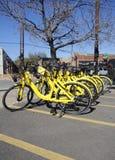 Vélos de location, Dallas Texas Photos libres de droits