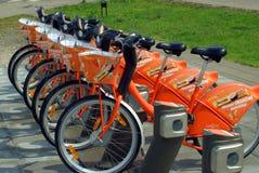 Vélos de ville pour le loyer le 10 août 2013 Photos libres de droits