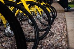 Vélos en parc attendant pour être loué photo libre de droits