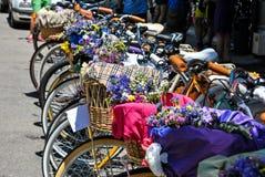 Vélos et fleurs Photo stock
