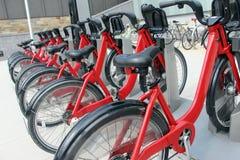 Vélos garés pour le loyer Photographie stock libre de droits