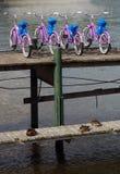 Vélos pour le loyer Photo libre de droits