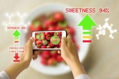Vérification de maturité de nourriture de réalité augmentée par dispositif intelligent image libre de droits