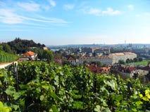 Vérifiez le sity de république de Prague Photos stock