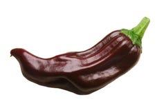 Véritable poivre de piment grec de pepperoncino, chemins Image stock