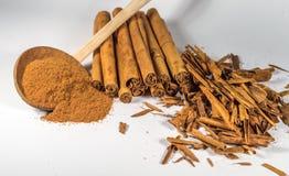 Véritables bâtons et poudre de cannelle de la Ceylan Images stock