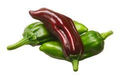 Véritables poivrons de piment grecs de pepperoncini, chemins Photos stock