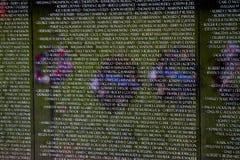 Vétérans du Vietnam commémoratifs dans le Washington DC, détail de plan rapproché, desi Photographie stock libre de droits