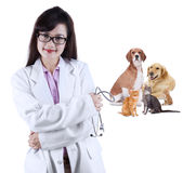 Vétérinaire asiatique avec l'animal familier Photographie stock