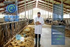 Vétérinaire avec des vaches dans l'étable à l'exploitation laitière Photographie stock