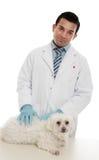 Vétérinaire avec l'animal familier malade Images stock