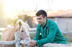 Vétérinaire avec le cheval photo libre de droits