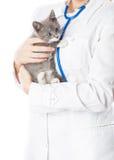 Vétérinaire avec le stéthoscope et le chaton Photos libres de droits