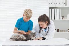 Vétérinaire choyant un chat avec son propriétaire image stock